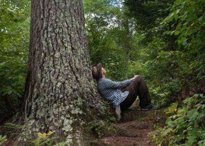 Amy_Tree-1